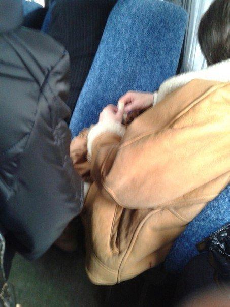 Жительница Николаева провела мастер-класс по лепке вареников в маршрутке (ФОТОФАКТ) (фото) - фото 1
