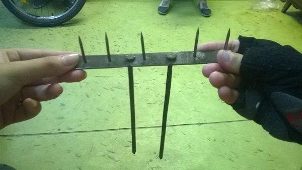 В Гродно в Румлевском лесопарке местный житель снова разбрасывает ловушки: в этот раз найдены острые колючки (фото) - фото 3