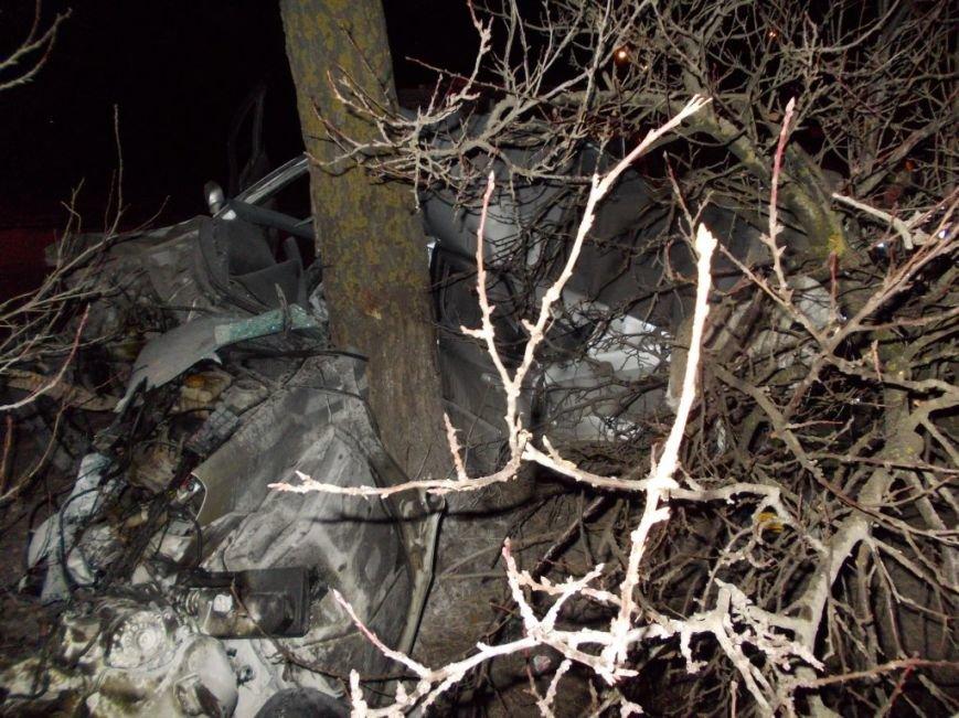 В Запорожье 30-летний водитель врезался в дерево и погиб, - ФОТО (фото) - фото 2