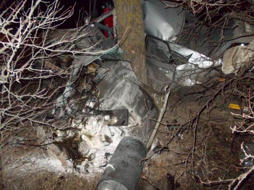 В Запорожье 30-летний водитель врезался в дерево и погиб, - ФОТО (фото) - фото 3
