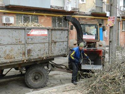 В Днепропетровске наконец спилили аварийные деревья (ФОТО) (фото) - фото 3