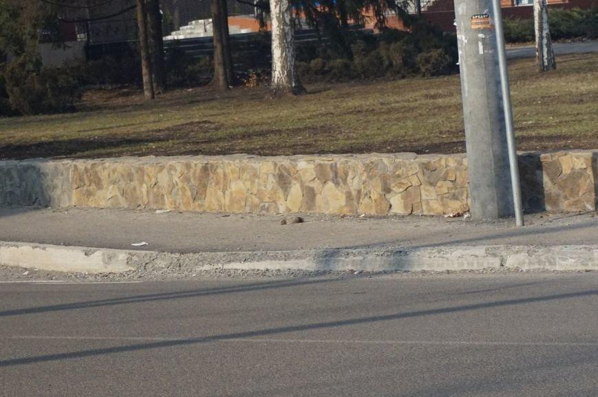 Не прошло и пол года, как бордюр на реконструированной за миллионы бюджетных средств улице начал крошиться (ФОТО) (фото) - фото 1