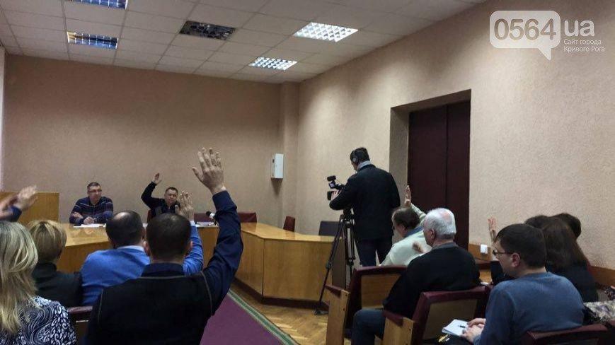 В Кривом Роге: депутаты не проголосовали за ProZorro и постройку приюта для животных, а горизбирком зарегистрировал мэра кандидатом в мэры (фото) - фото 3