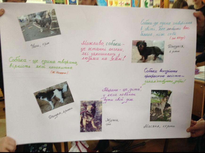 Тернопільські школярі збирали кошти на потреби притулку для собак, фото-2