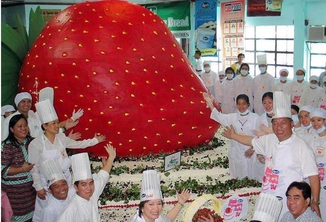 Самые большие торты в мире (фото) - фото 3