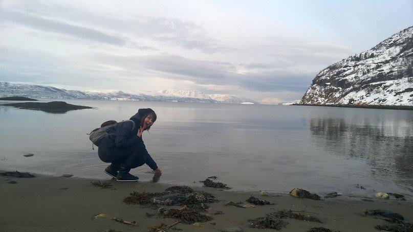 Гость из Норвегии поделился впечатлениями от Сыктывкара, фото-3
