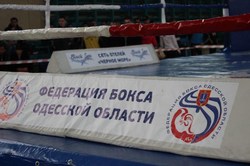 20ad8bea5e72745ceb5ac8062a21cb2a Одесские боксеры «порвали» три страны