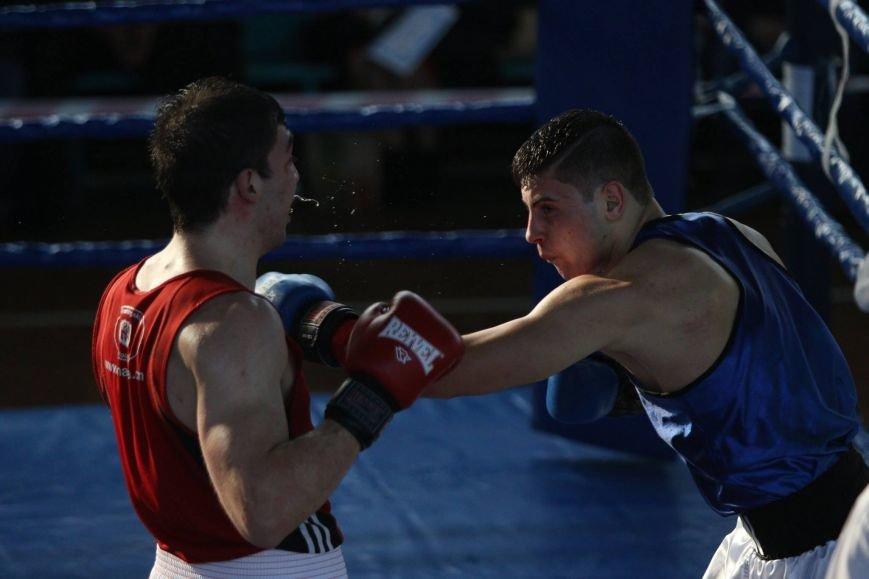 5ed33cd6fa7df7aba949f03f0e10efc5 Одесские боксеры «порвали» три страны