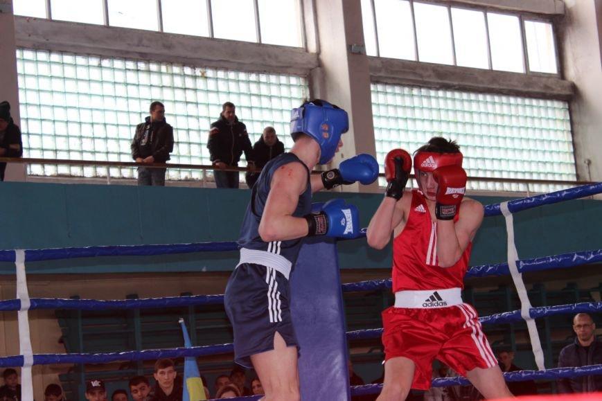 69e7ca7c389da1969042d07350ef7457 Одесские боксеры «порвали» три страны