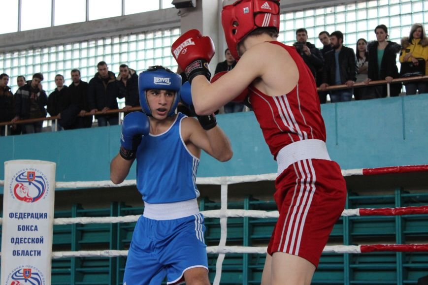 8858fd7a8506de3c376e4b031f99e176 Одесские боксеры «порвали» три страны