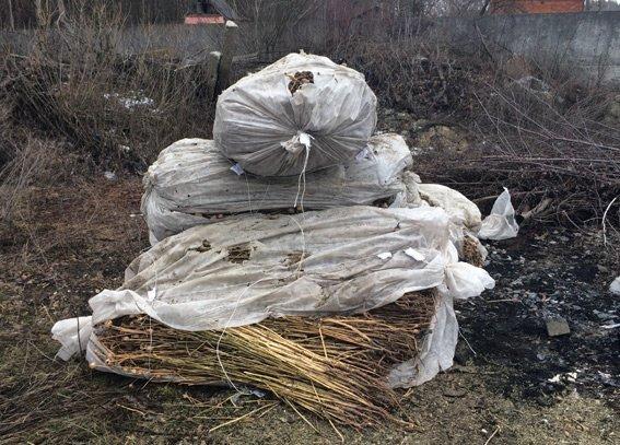 На Житомирщине полицейские уничтожили в огне наркотики (фото) - фото 1