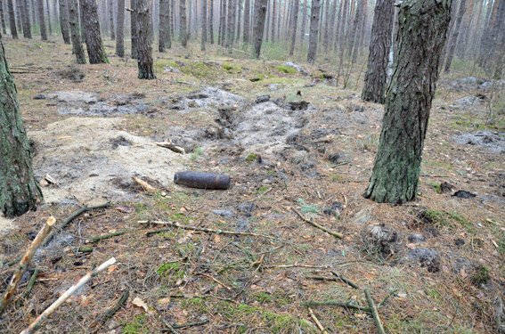 В Житомирском районе обнаружен арсенал артиллерийских снарядов времен ІІ мировой войны (фото) - фото 1