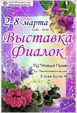Выставка фиалок, приключенчиский экшн и комедия: проводим досуг в Одессе (ФОТО, ВИДЕО) (фото) - фото 1