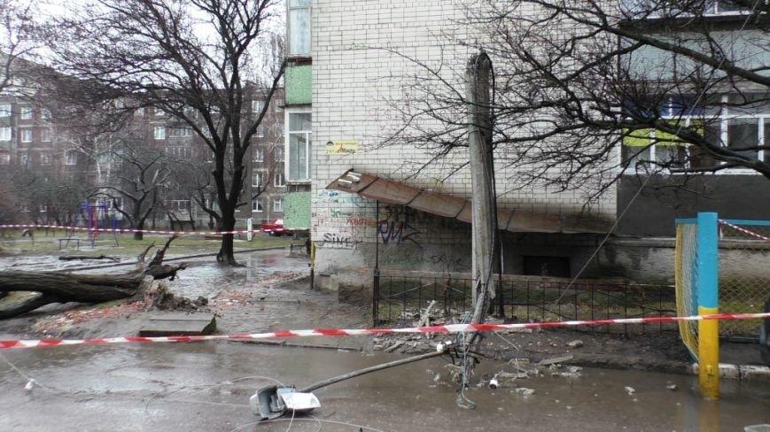 В Чернигове упавшее дерево сломало столб и повредило машину (фото) - фото 1