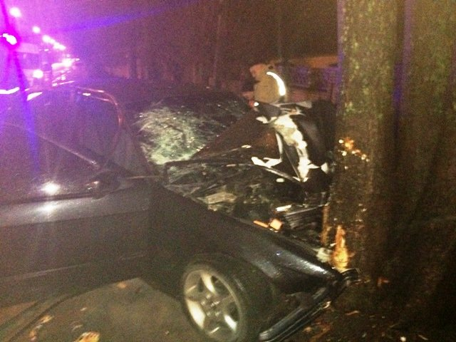 В Житомире «BMW-M3» въехал в дерево: водительпогиб на месте, фото-1
