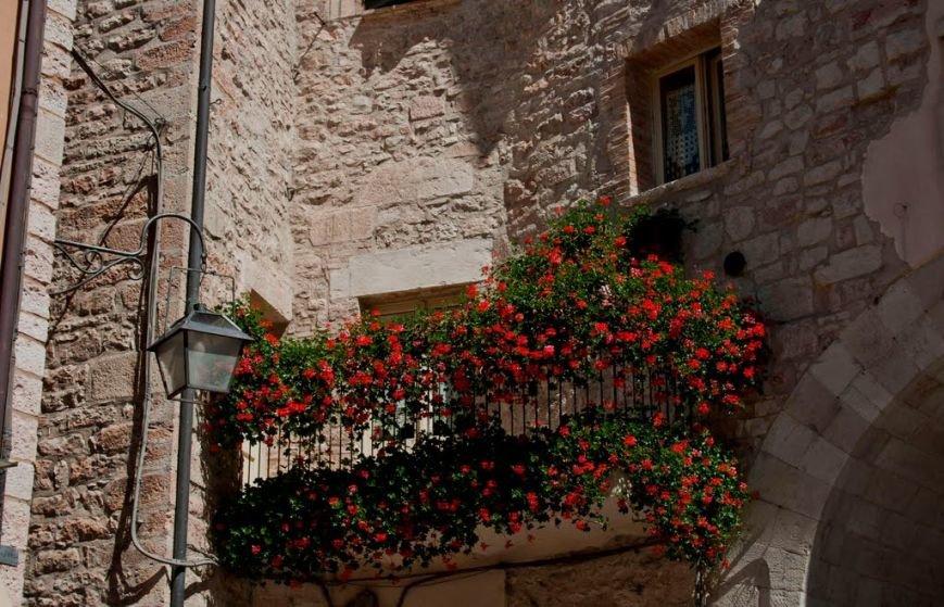 balcony-with-flowers16-1024x659