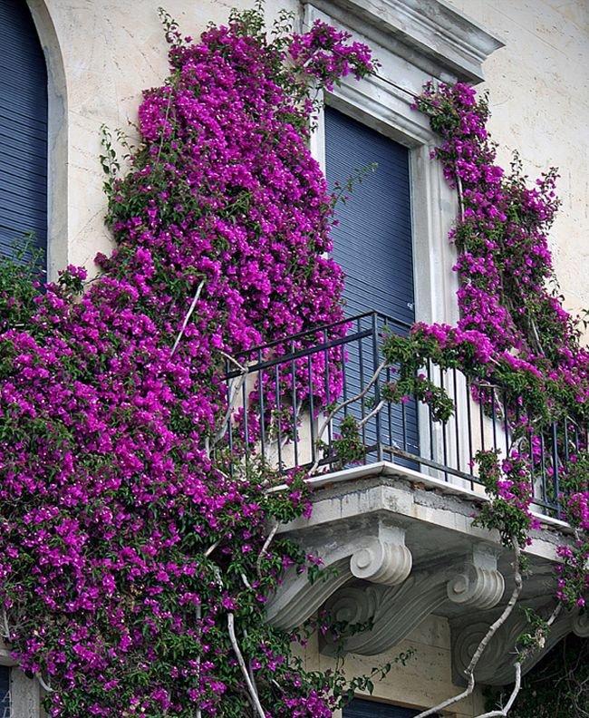 Найкрасивіші балкони світу (ФОТО), фото-6