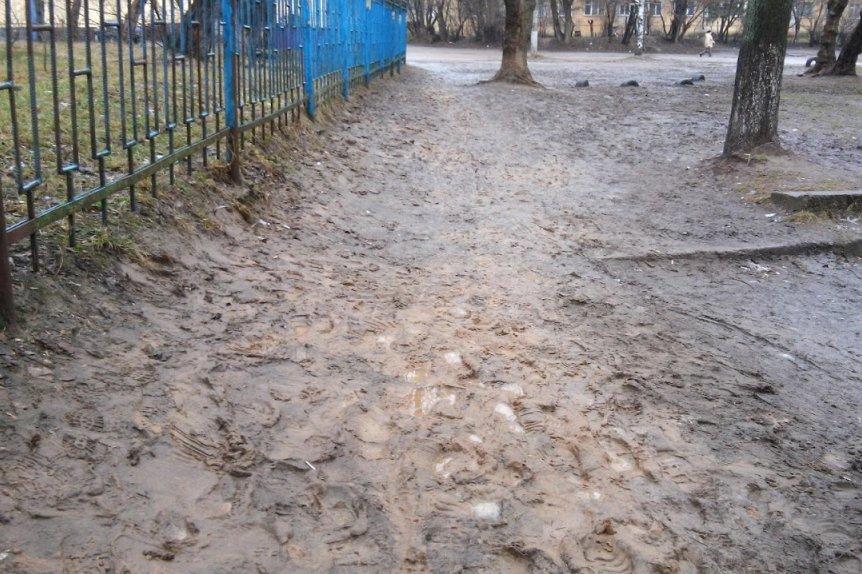 Будет ли в Чернигове новый гимн, коммунальный транспорт до Киева и улица Петрункевича? (фото) - фото 13