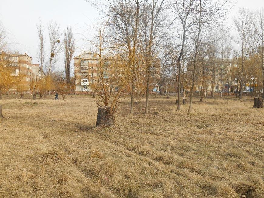 Сегодня в городском парке Славянска выбирали место для реализации новых проектов (фото) - фото 4