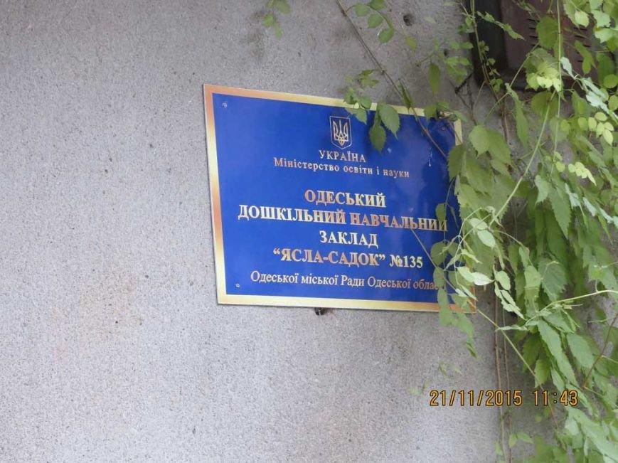 19b2978312d757d7356deaa0c8603227 В Одессе огромный засохший тополь рискует свалиться на детский сад