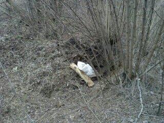 СБУ разыскивает криворожанина, закопавшего в Новополье десятки гранат РГД-5 и Ф-1  (ФОТО) (фото) - фото 2