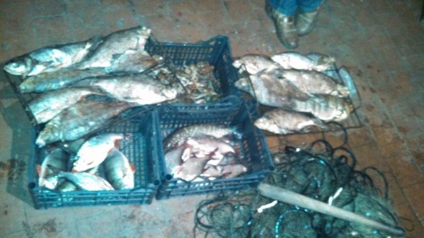 На Тернопільщині браконьєри виловлювали рибу та раки тоннами (фото) (фото) - фото 1
