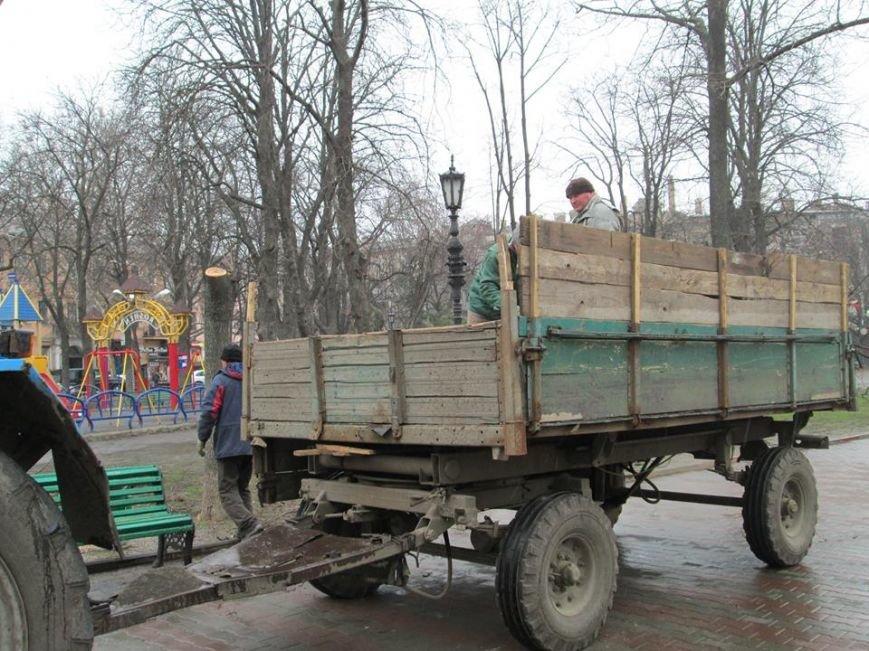 d1cd188c6bc7519d0496fd8f9a8d43b8 В Одессе на Соборной площади пилят деревья