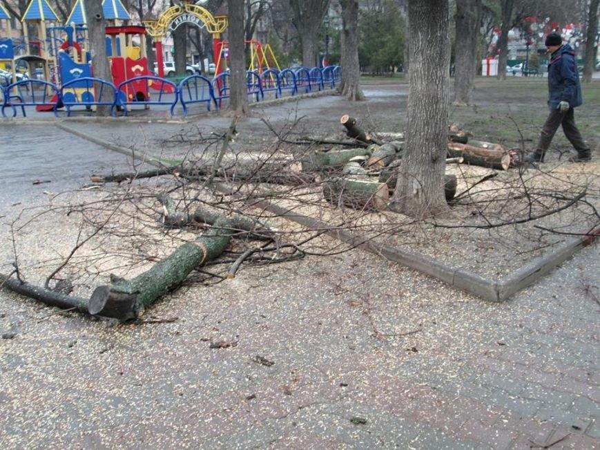 d3104231b5f52a6a216ee84b5f39b6ed В Одессе на Соборной площади пилят деревья
