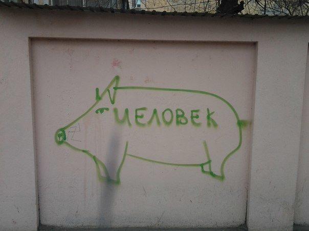 Одессу атакуют граффити-хрюшки (ФОТО) (фото) - фото 1
