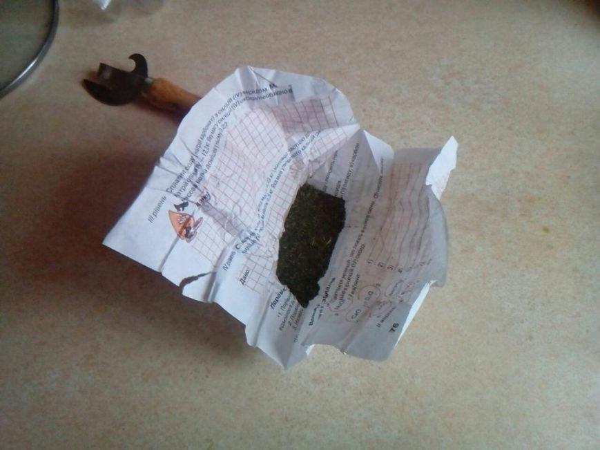 У Львові знайшли марихуану у житловому будинку: опубліковано фото, фото-1