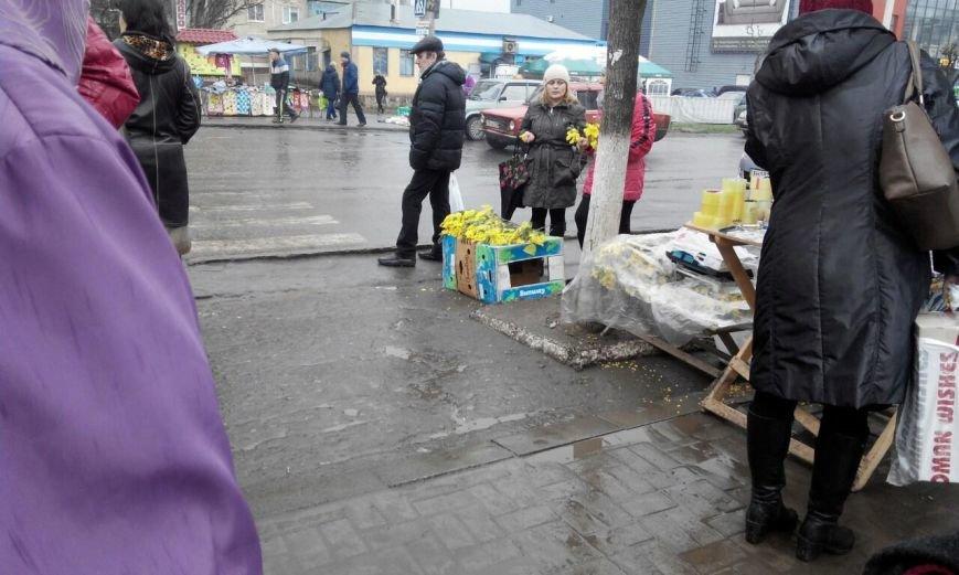 В Краматорске продают мимозы по 800 грн за кило (фото) - фото 1