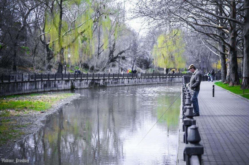 Мартовское настроение в Симферополе (ФОТО), фото-11