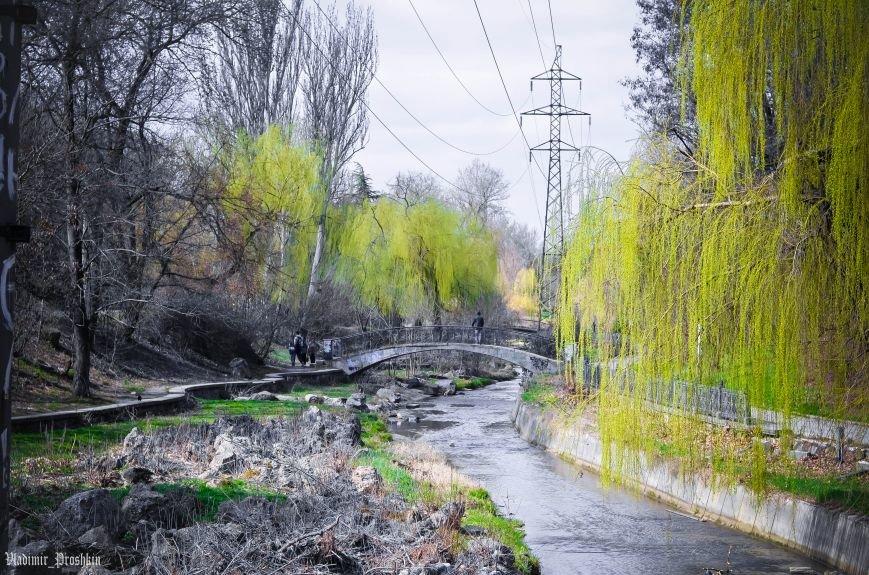 Мартовское настроение в Симферополе (ФОТО), фото-6