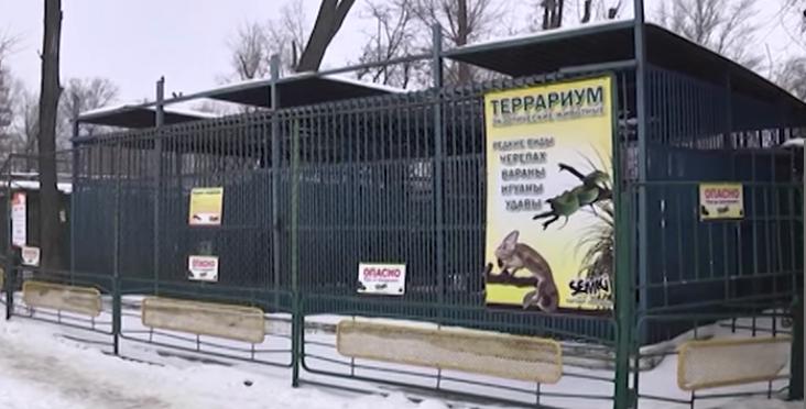 «Нечеловеческие» условия: спустя почти сорок лет «заключенные» днепропетровского зоопарка вернутся в нормальные условия содержания (фото) - фото 7