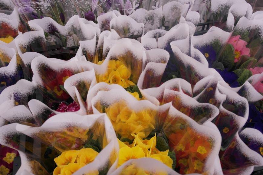 В Красноармейске начался цветочный бум! Во сколько мужчинам обойдутся улыбки любимых в праздник?, фото-9