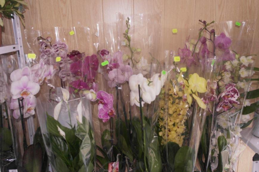 В Красноармейске начался цветочный бум! Во сколько мужчинам обойдутся улыбки любимых в праздник?, фото-11