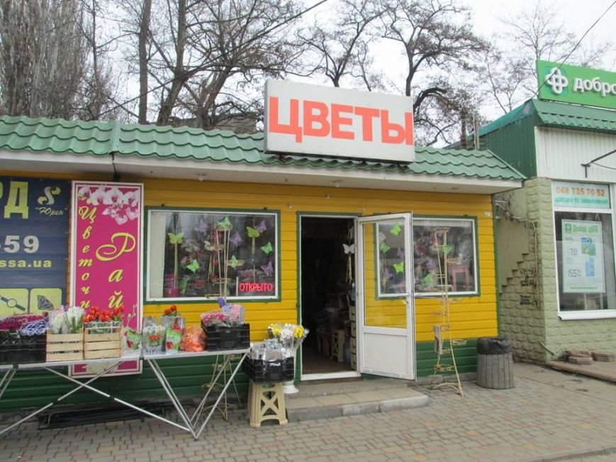 В Одессе продавцы цветов «заломили» цены, фото-5