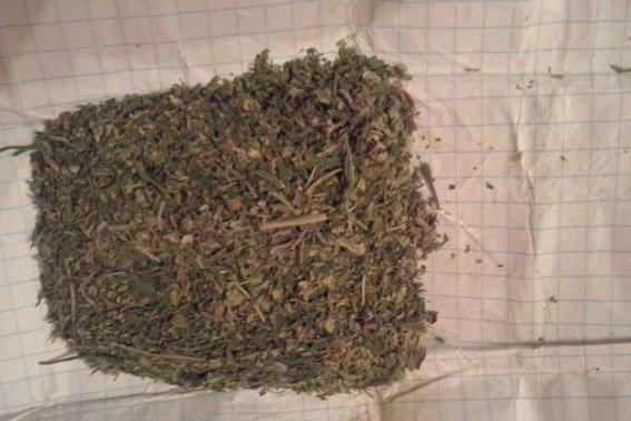 Новая полиция Полтавщины изымает наркотики (фото) - фото 2