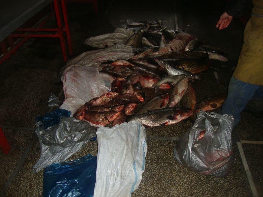 У трети продавцов на центральном рынке Ростова не оказалось документов на рыбу (фото) - фото 2