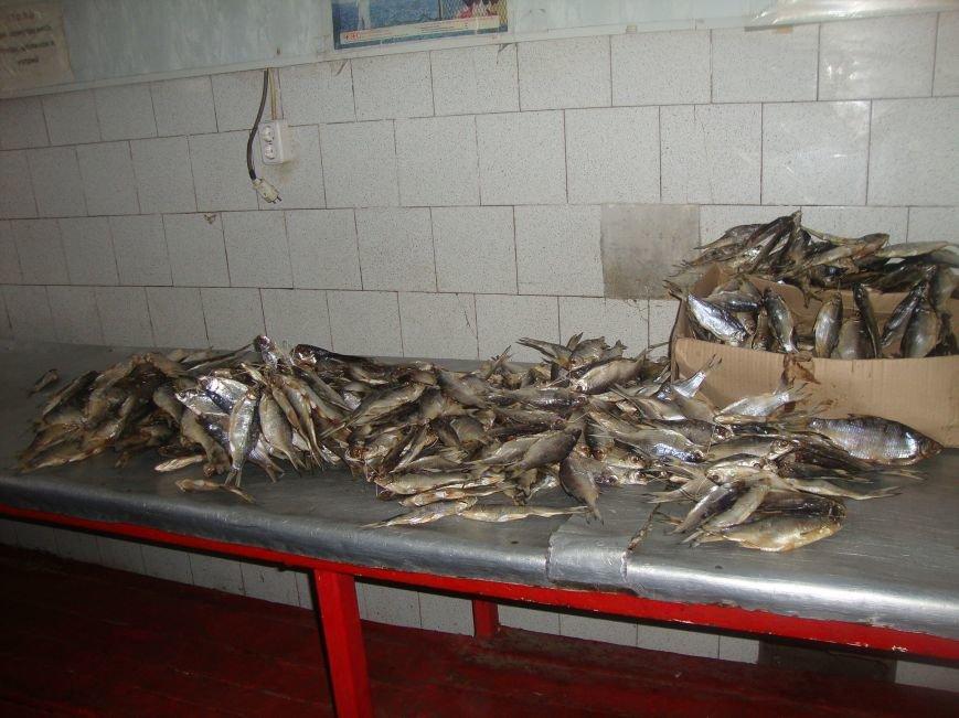 У трети продавцов на центральном рынке Ростова не оказалось документов на рыбу (фото) - фото 3