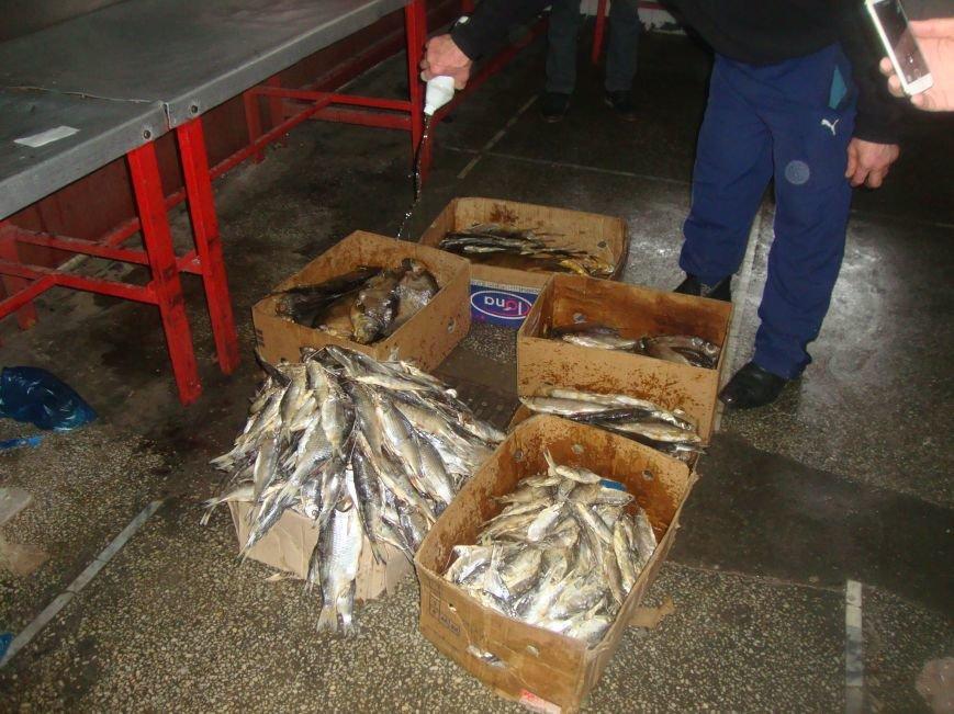 У трети продавцов на центральном рынке Ростова не оказалось документов на рыбу (фото) - фото 5
