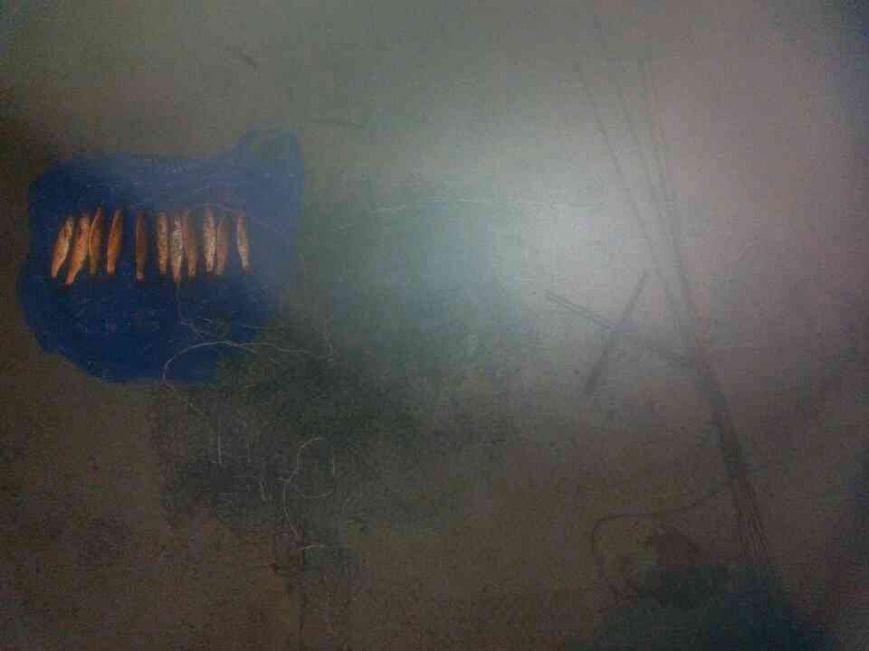 В Мариуполе пограничники задержали браконьера (фото) - фото 1
