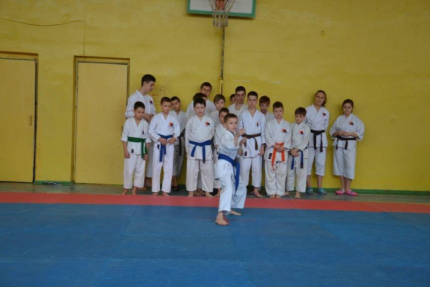 Юные спортсмены боролись за звание Чемпиона Кривого Рога по каратэ-до (ФОТО), фото-6