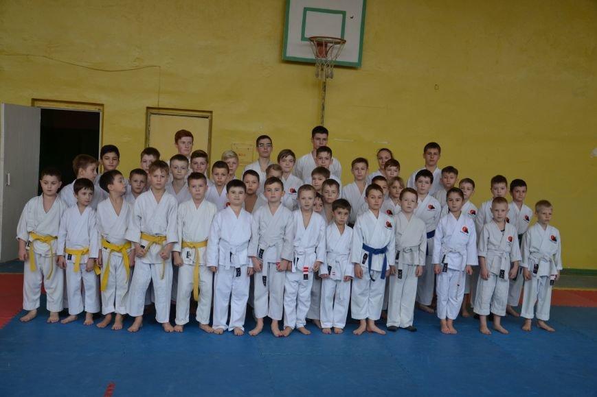 Юные спортсмены боролись за звание Чемпиона Кривого Рога по каратэ-до (ФОТО), фото-2