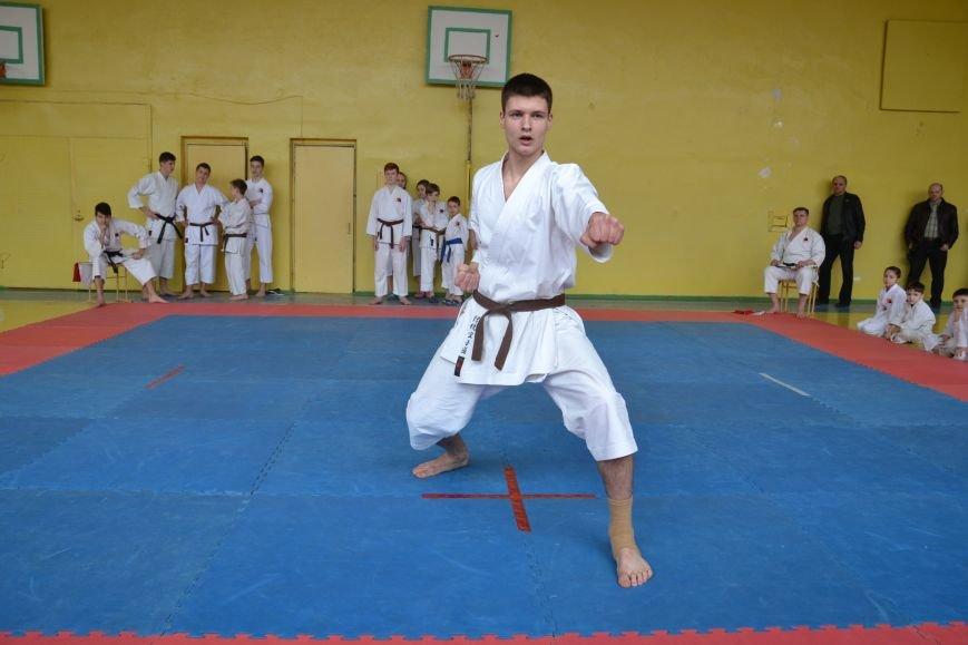 Юные спортсмены боролись за звание Чемпиона Кривого Рога по каратэ-до (ФОТО), фото-4