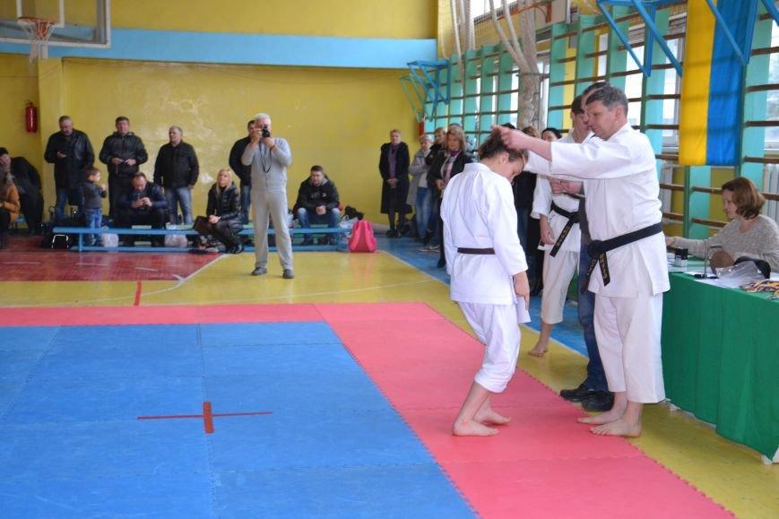 Юные спортсмены боролись за звание Чемпиона Кривого Рога по каратэ-до (ФОТО), фото-11