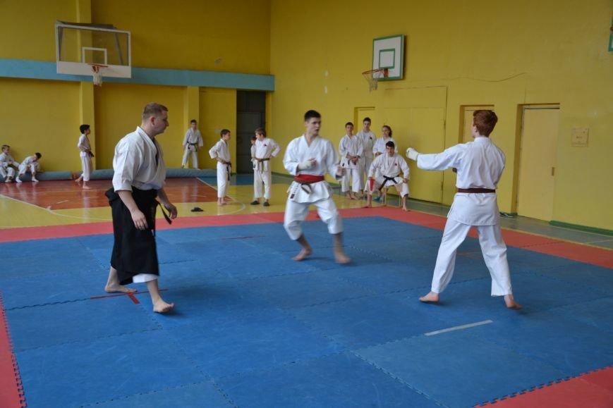 Юные спортсмены боролись за звание Чемпиона Кривого Рога по каратэ-до (ФОТО), фото-5