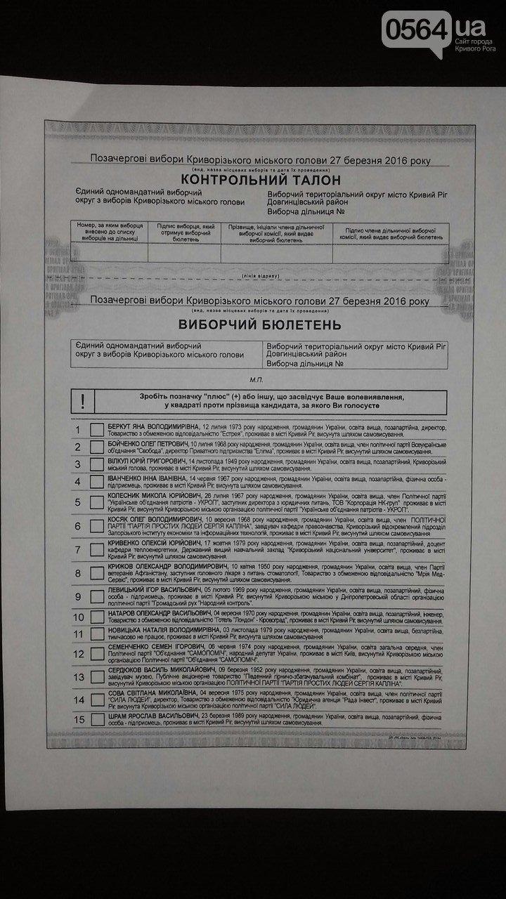 В Кривом Роге: почтили память Великого Кобзаря, требовали освободить Надежду Савченко, утвердили текст избирательного бюллетеня (фото) - фото 3