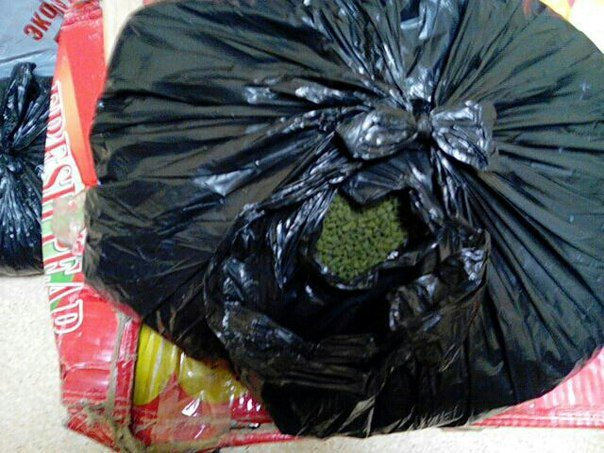 В Гродно у женщины-продавца сухофруктов нашли 200 килограмм насвая (фото) - фото 2