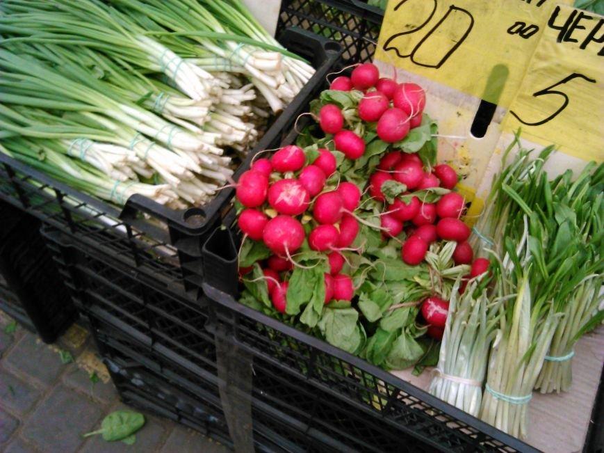 36ea80bc98de14db26f29f6ab447c1c6 На одесских рынках появилась первая редиска, но цены зашкаливают